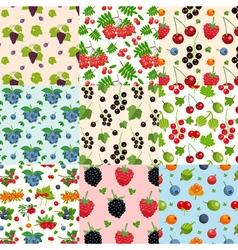 Set Of Nine Seamless Berries Patterns vector image
