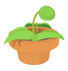 Plant in pot icon cartoon style vector