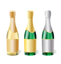 Champagne bottles vector