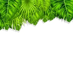 Natural frame with green tropical leaves vector