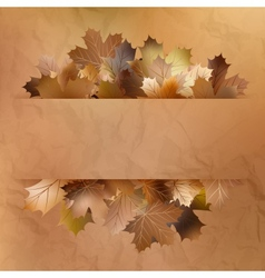Colorful autumn leaves on a old paper EPS 10 vector image