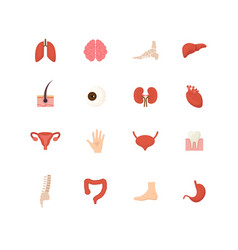 cartoon human internal organs icons set vector image