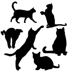 Cats preview vector