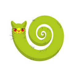 Cat fabulous isolated long tail of pet on white vector