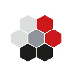 hexogen logo concept flat vector image vector image