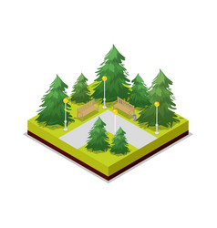 park road and pine trees isometric 3d icon vector image