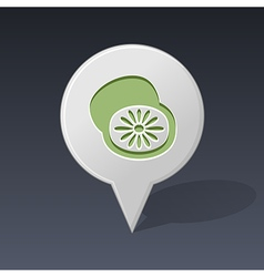 Kiwi pin map icon fruit vector