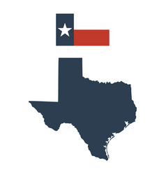 flag of the us state of texas and map vector image vector image
