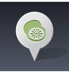 Kiwi pin map icon fruit vector