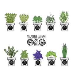 A set of balcony spice as a design element on a vector image