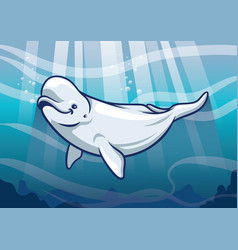 Beluga whale in the ocean vector