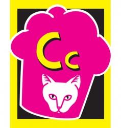 flash card c vector image