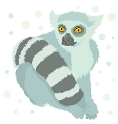 ring tailed lemur vector image