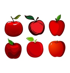 Ripe red apple fruits with leaves vector