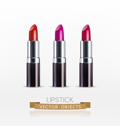 set Lipstick isolated on a white background vector image