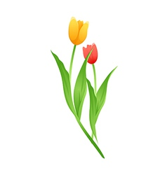 Icon tulip vector