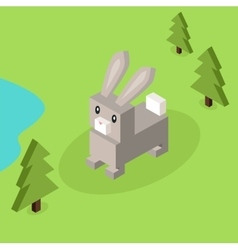 Wild animal hare rabbit isometric 3d design vector