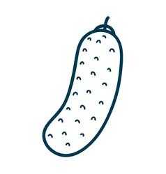 Contour health cucumber vegetable icon vector