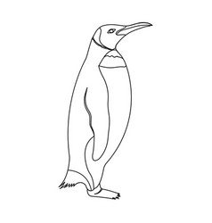 Penguin flightless sea bird the imperial penguin vector