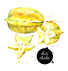 Watercolor hand drawn fresh yellow fruit carambola vector