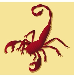 Tattoo in scorpion vector image