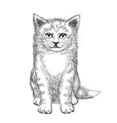 Doodle hand drawn kitten vector image