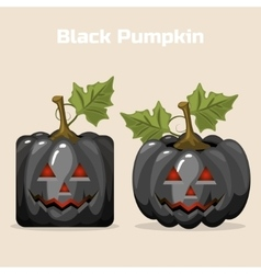 Autumn Black Square stylized Pumpkin Vegetable vector image vector image