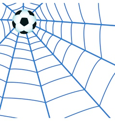 Ball on cobweb vector