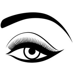 Eye with fluffy eyelid vector