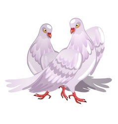 Two pink pigeon Symbol of love vector image vector image