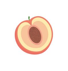 slice pomegranate fruit healthy vector image