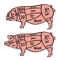 Cut of meat set Hand drawn pig Pork cuts diagram vector image