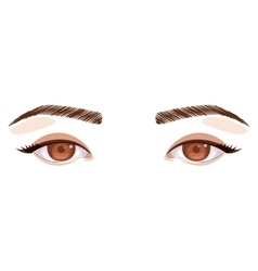 Isolated eye and look concept vector