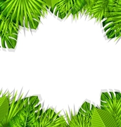 Summer Fresh Background with Tropical Leaves vector image vector image