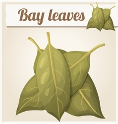 Bay leaves detailed icon vector