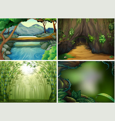Four different forest scenes vector