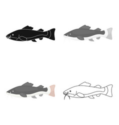Phractocephalus hemioliopterus fish icon cartoon vector