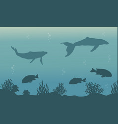 Silhouette of ocean with whale and fish landscape vector
