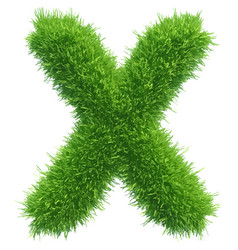 Small grass letter x on white background vector
