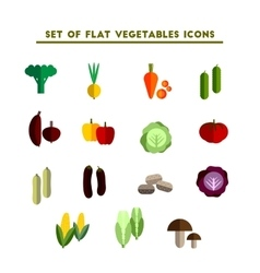 set of color flat icon vegetable vector image
