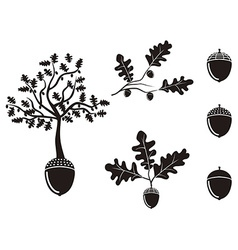 Oak acorn silhouettes set vector