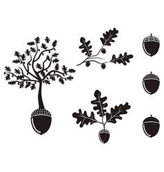 oak acorn silhouettes set vector image
