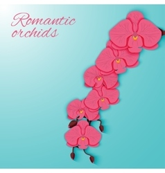 A branch of pink orchids on a bright background vector