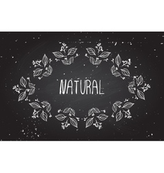 Hand-sketched herbal banners on chalkboard vector
