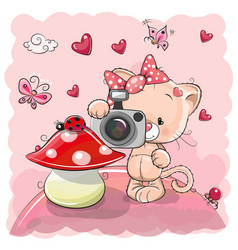 Cute cartoon kitten with a camera vector