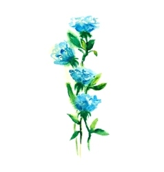 Blue roses watercolor drawing vector
