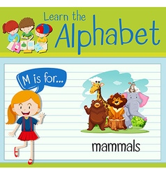 Flashcard alphabet M is for mammals vector image