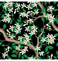 Floral seamless pattern with white flowers vector image vector image