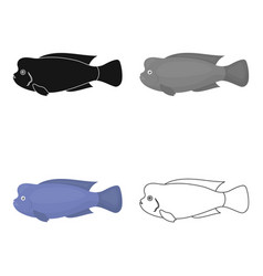 Stearocranus fish icon cartoon singe aquarium vector