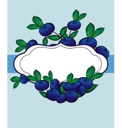 Hand drawn blueberry berry label vector